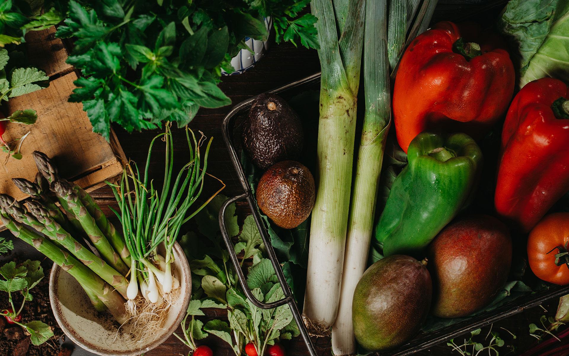 Intro – Home / Frutas